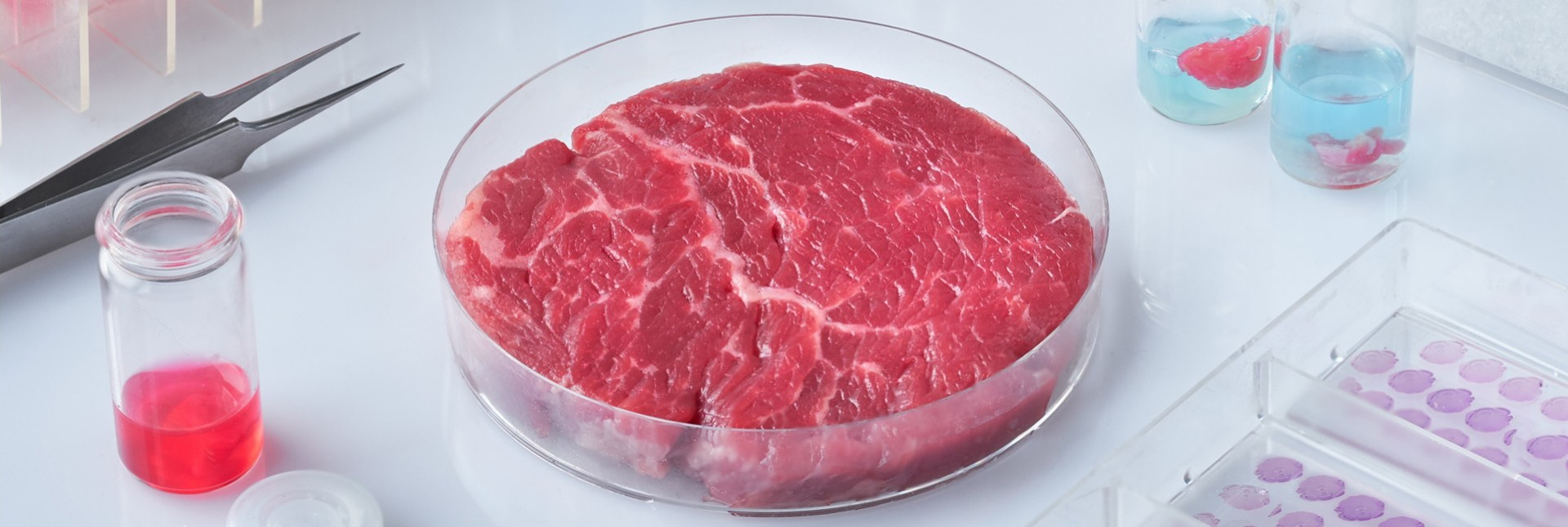 Cultured Meat: Better Than The Real Thing?
