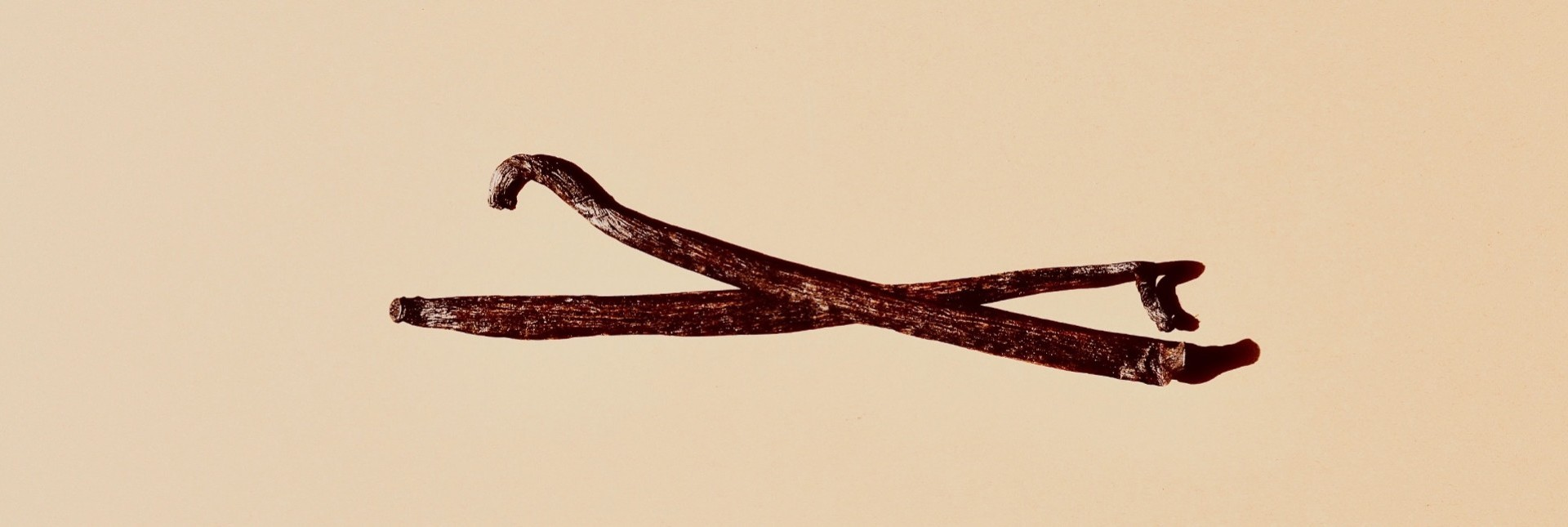 Vanilla Beans: The Cost of Production