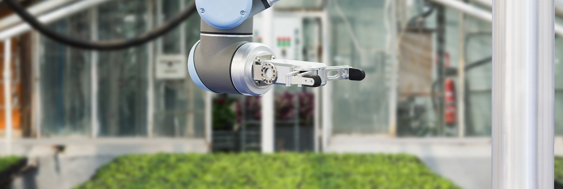 Agro Robots | Which Robots Actually Work On Farms?