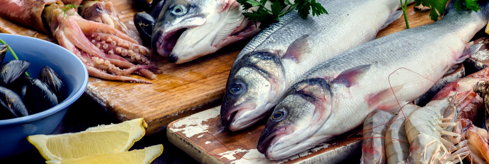 Sustainable Fisheries | The MSC Label