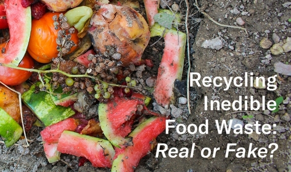 Recycling Inedible food waste