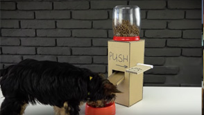 DIY food dispensers, for puppies