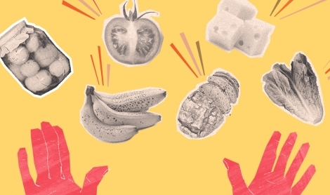 First Expired, First Out | Fight Food Waste Like a Pro