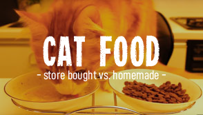 Cat food: Store bought vs Homemade