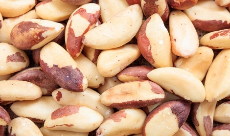The Brazil Nut | How It's Grown
