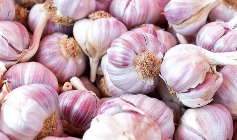 How to Get the Most Goodness From Your Garlic