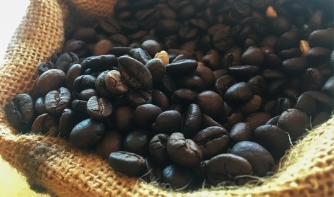 How Coffee Farmers Are Tackling Global Warming
