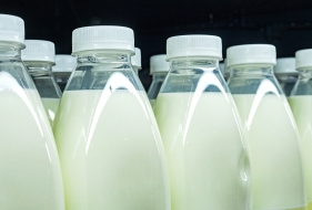Milk Production | What Really Drives the Price of Milk?