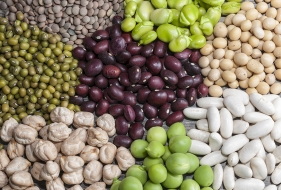The Surprising Sources of Protein That Are Not Animal Products