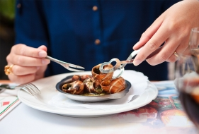 Are Edible Snails a source of sustainable meat?
