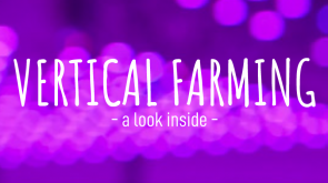 Vertical Farming | A Look Inside