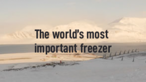 The World's Most Important Freezer