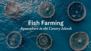 Fish Farming: Aquaculture in the Canary Islands