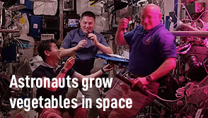 Astronauts Grow Vegetables In Space