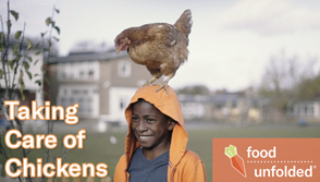 City Chicks | FoodUnfolded Documentary